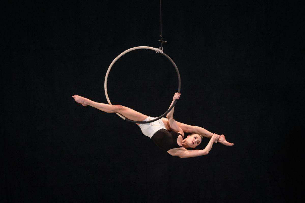 Arts aerialist price list - arts pdf aerialist professional – REMM Group