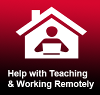 Remote Teaching and Working