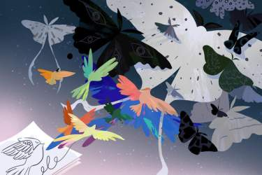 graphic with colorfully drawn birds and paper