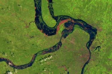 satellite map of three rivers converging on a green background