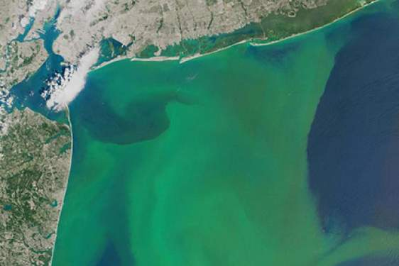 algae bloom photo from space