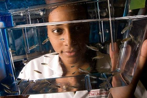 woman in lab with fish tank