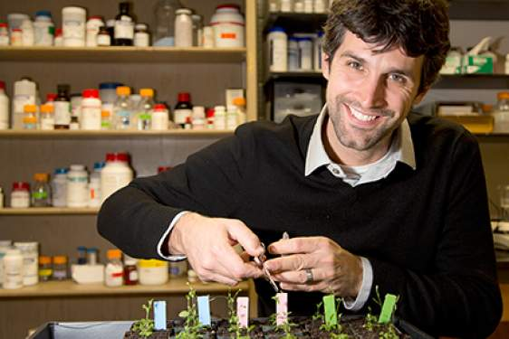 man in lab with plants