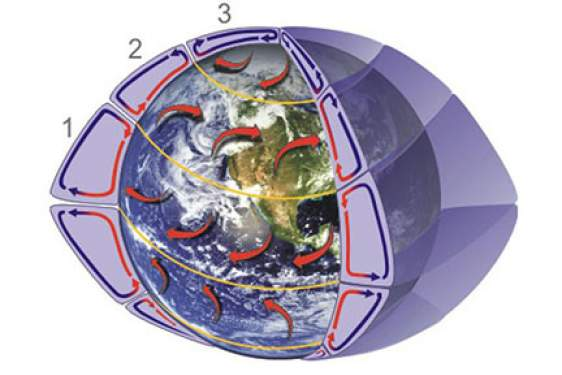 graphic of global circulation