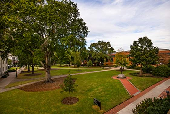 photo of campus quad in waning daylight